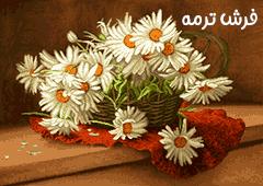 گل و گلدان کد ۵