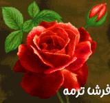 گل و گلدان کد ۶