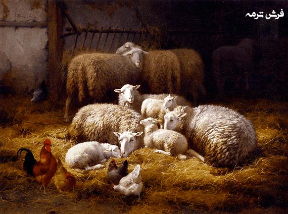 ⭐️نخ ونقشه حیوانات کد ۱۱۳۱